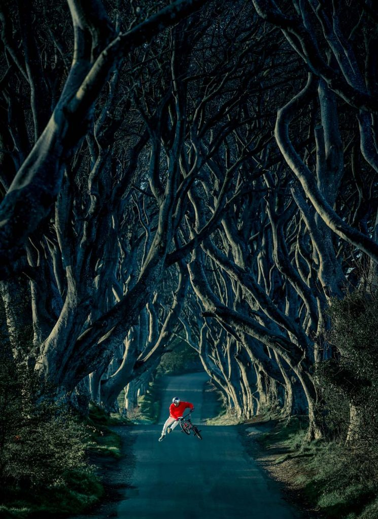 Game of Throne's Name: Kingsroad | Actual Name: The Dark Hedges