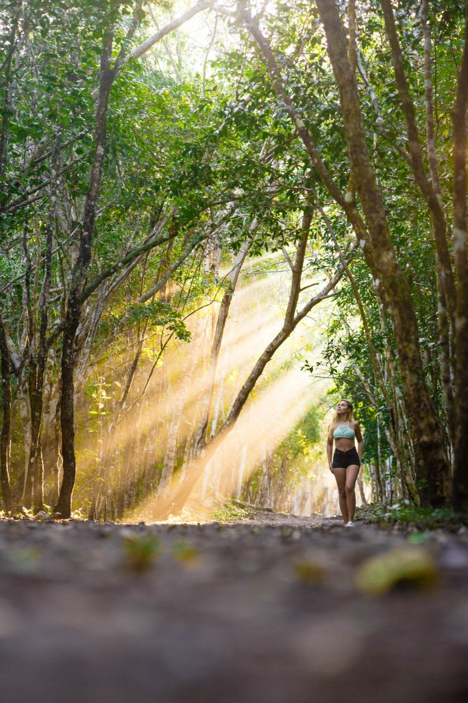 A Mindful Approach of Appreciating Our Surroundings with Kevin Eassa Forest Trees Walk Girl