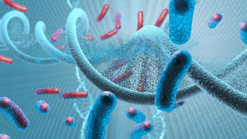 virus food diet immune system dental