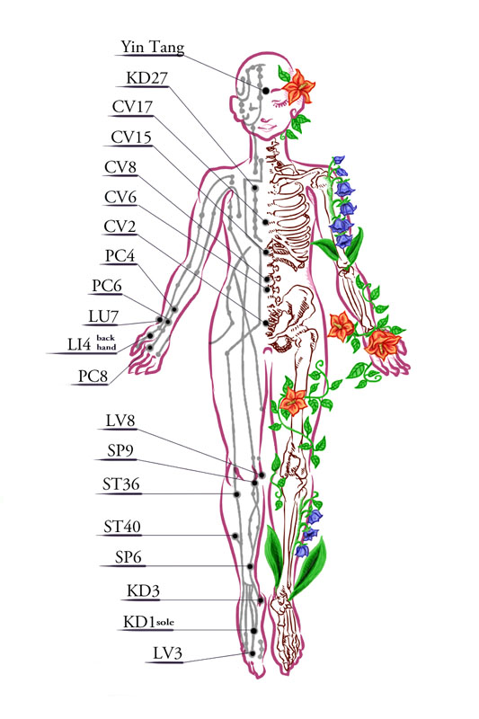 chinese chi map of the bodies energy flow and energy points