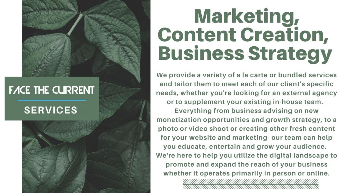 Face The Current Services: Purpose, Passion and Measurable Results Marketing content creation business strategy